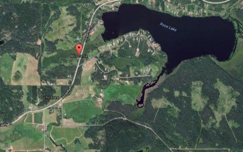 Miocene, BC, Canada