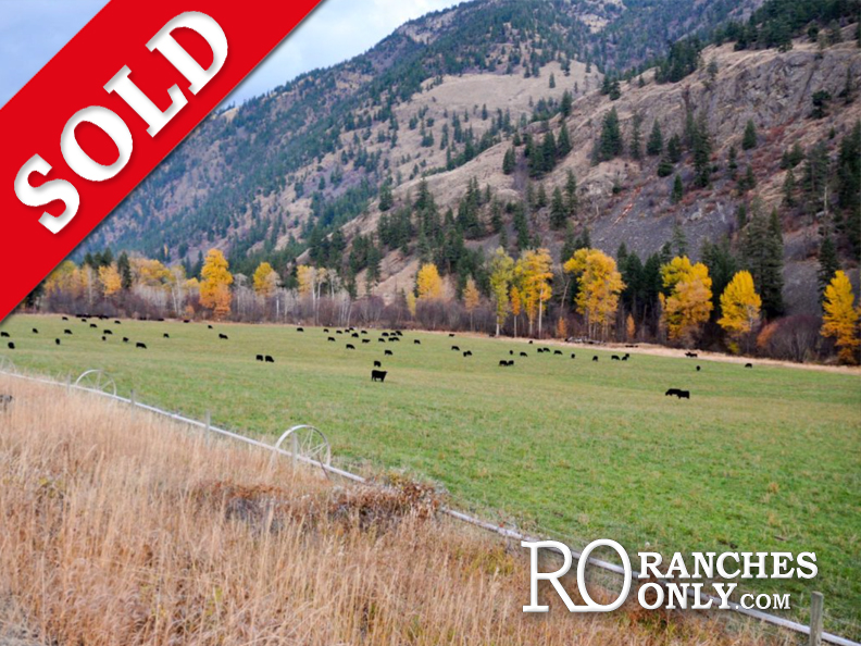 SOLD Wayhome Ranch >Olalla, BC | 212 Acres | High Producing Cattle Operation | 2 Residences | 50×80 Dream Shop | Cattle Handling System | 6 Stall Horse Barn