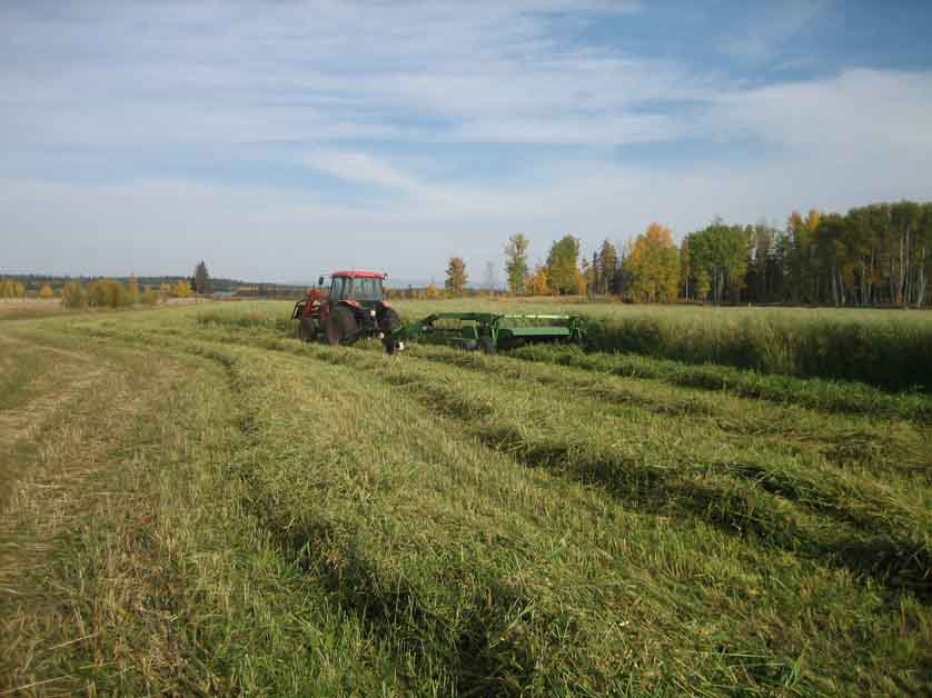 2261 Mile 108 Road > Horsefly, BC | 596 Acres | Creek Frontage | Crown Range Licence | 150 Acres Hay Fields | Hayshed & Equipment Storage | Serviced Cabin