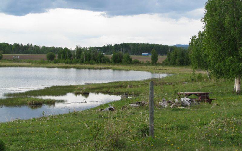 838 Jackfish Lake Road