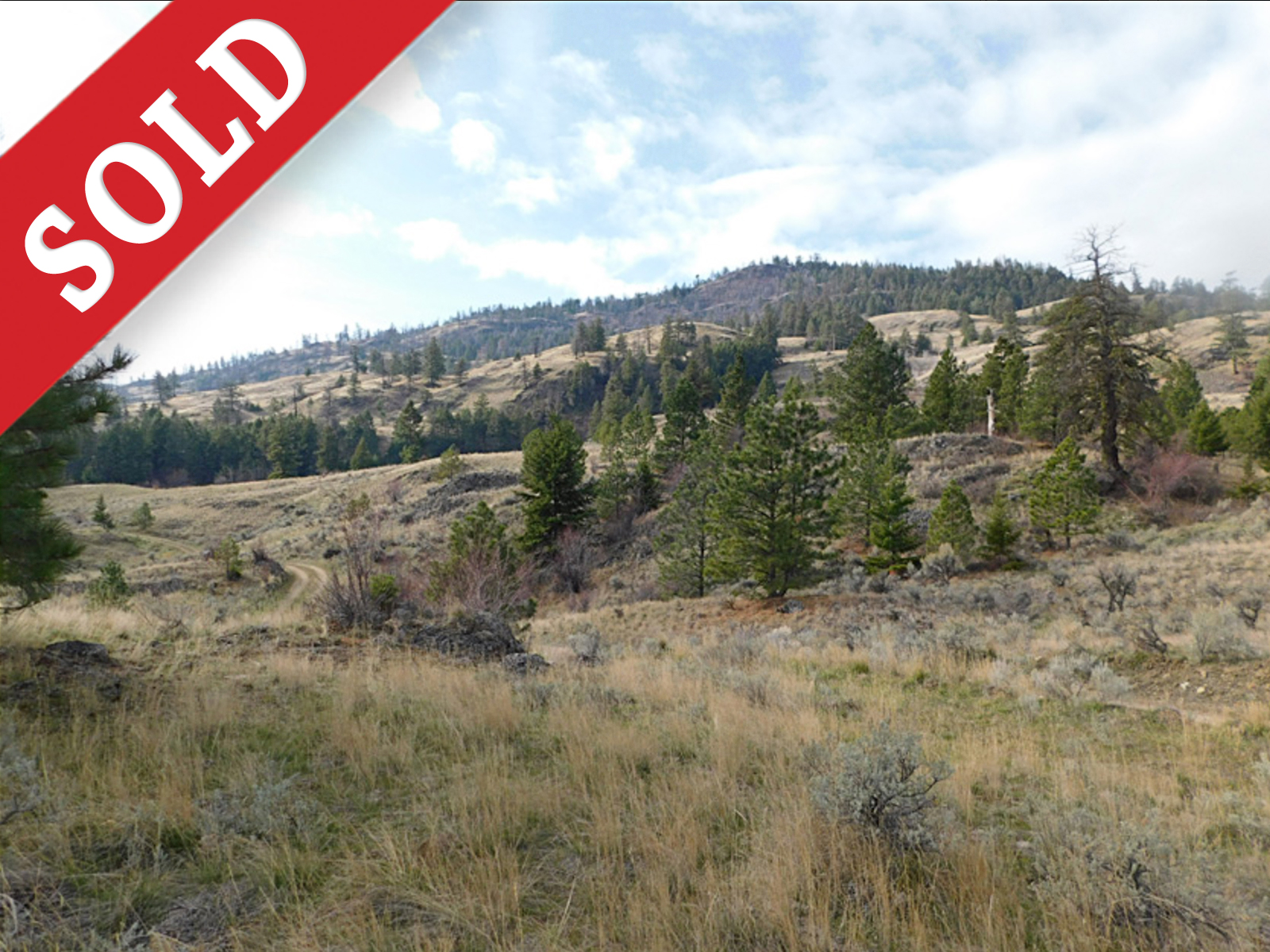 SOLD 4764 Wildrose Street > Oliver, BC  | 228 Acres | Ranch House | Commercial Potential for Vineyard Estate!