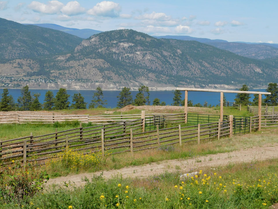1313 Greyback Mountain Road  > Penticton, BC  | 80.83 Acres | Runs 200 Cow/Calf Pairs | Fenced & Fenced | Crown Grazing Lease | 100×80 Riding Arena